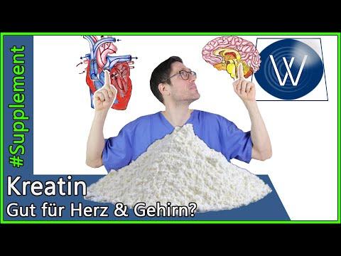 Kreatin: Wirkung & Prophylaxe - Können auch unser Herz, Knochen & Gehirn vom Supplement profitieren?