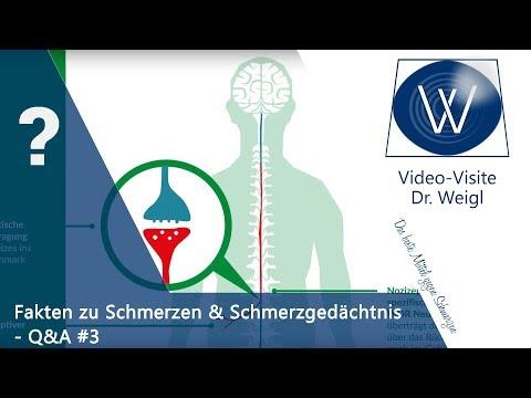 Chronischer Schmerz, das Schmerzgedächtnis, psychosomatische Schmerzen & Schmerztherapie ☎Q&A #3👥