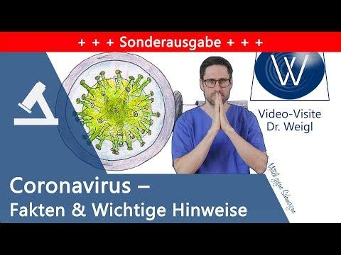 Coronavirus - Was wir wissen: Medizinisch-wissenschaftliche Fakten & konkrete Hinweise für Jeden
