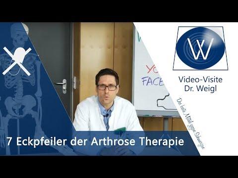 Knorpelschaden und Arthrose ganzheitlich therapieren // Faszientraining, Ernährung, Medikamente, TEP