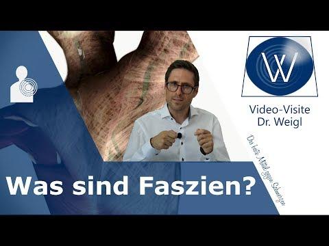 Jetzt ist die Zeit der Faszie ❗ Was sind Faszien & welche Aufgaben hat das Fasziengewebe? #1