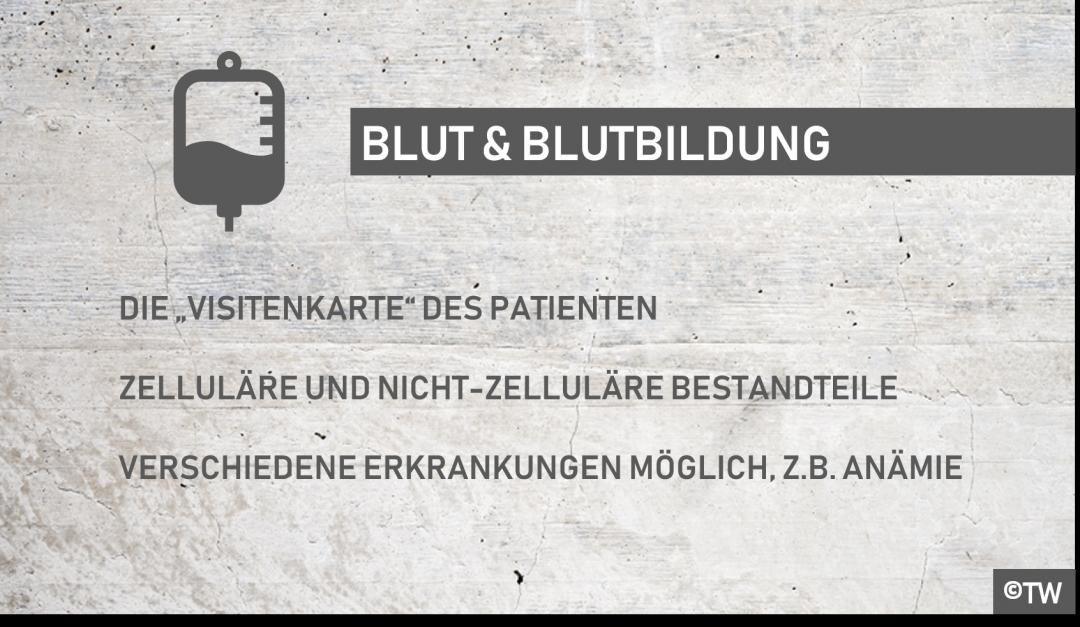 DoktorWeigl.de erklärt Blut - Aufgaben & Funktion von Blut