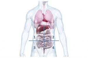Doktorweiglde Erklärt Bauchschmerzen Links Unterbauchschmerzen