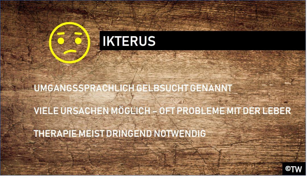 Doktorweiglde Erklärt Gelbsucht Symptome Ursachen Therapie Des
