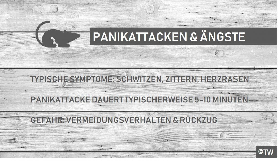 Panikattake